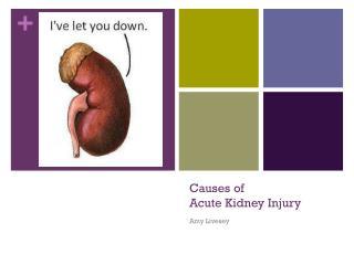 Causes of  Acute Kidney Injury