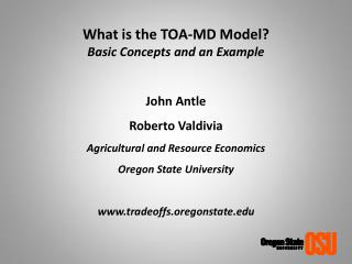 What is the TOA-MD Model?  Basic Concepts and an Example John  Antle Roberto Valdivia
