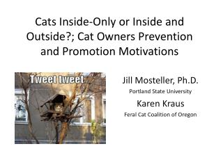 Cats Inside-Only or Inside and Outside?; Cat Owners Prevention and Promotion Motivations