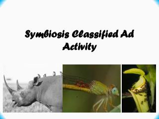 Symbiosis Classified Ad Activity