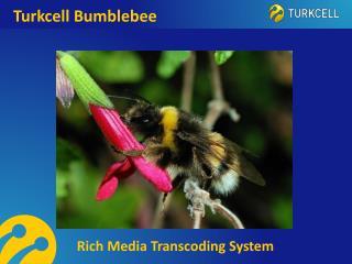 Turkcell Bumblebee