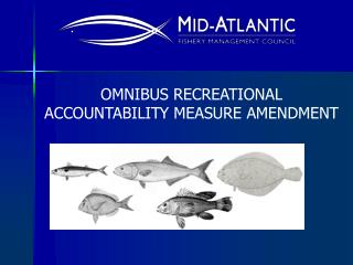 OMNIBUS RECREATIONAL ACCOUNTABILITY MEASURE AMENDMENT
