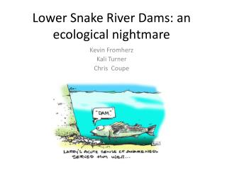 Lower Snake River Dams: an ecological nightmare