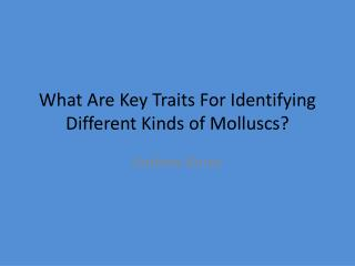 What Are  K ey  T raits  F or  I dentifying  D ifferent  K inds of  Molluscs ?
