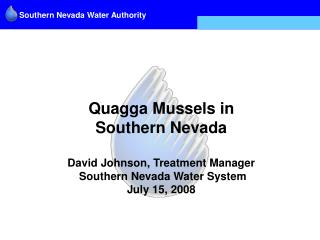 Quagga Mussels in  Southern Nevada  David Johnson, Treatment Manager   Southern Nevada Water System July 15, 2008