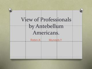 View of Professionals by Antebellum Americans.