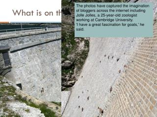 What is on the dam?