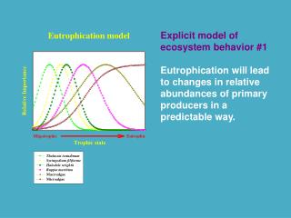 Explicit model of ecosystem behavior #1
