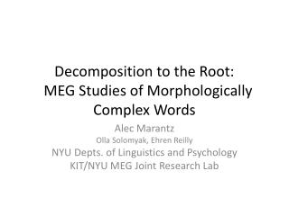 Decomposition to the Root:   MEG Studies of Morphologically Complex Words