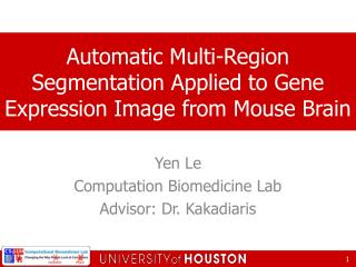 Yen Le Computation Biomedicine Lab Advisor: Dr.  Kakadiaris