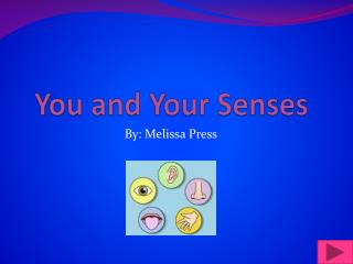 You and Your Senses