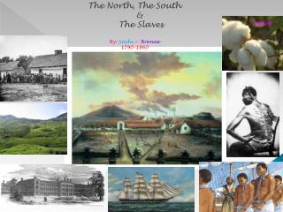 The North, The South    &     The Slaves By:  Sachi  &  Brenae 1790-1860