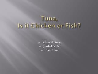 Tuna,  Is it Chicken or Fish?