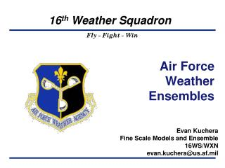 Air Force Weather Ensembles