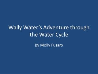 Wally Water's Adventure through the Water Cycle