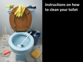 Instructions on how to clean your toilet