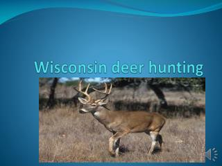 Wisconsin deer hunting