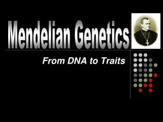 From DNA to Traits