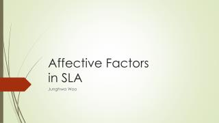 Affective Factors  in SLA