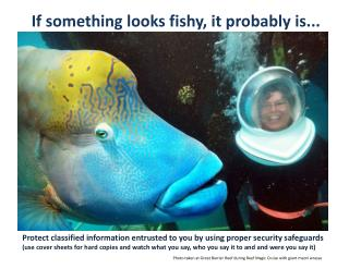 If something looks fishy, it probably is...