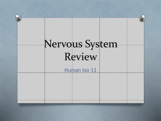 Nervous System Review