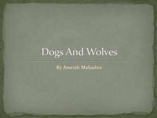Dogs And Wolves