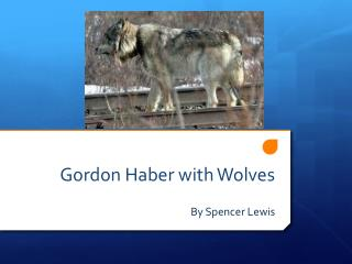 Gordon Haber with Wolves