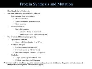 Protein Synthesis and Mutation