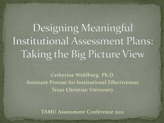Designing Meaningful Institutional Assessment Plans:  Taking the Big Picture View