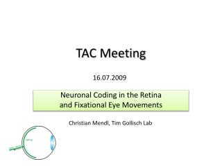 TAC Meeting