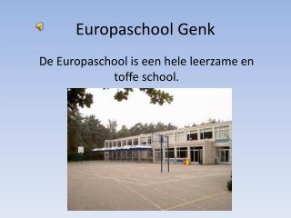 Europaschool Genk