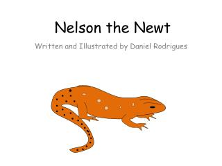 Nelson the Newt