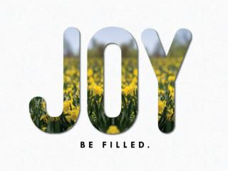 Joy unleashed.