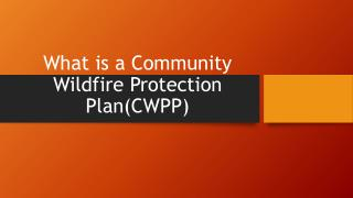 What is a Community Wildfire Protection Plan(CWPP)