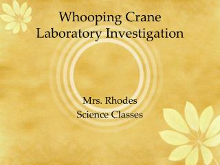 Whooping Crane Laboratory Investigation