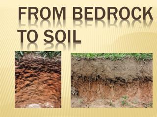 From Bedrock to Soil