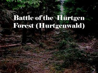 Battle of the  Hürtgen Forest (Hurtgenwald)