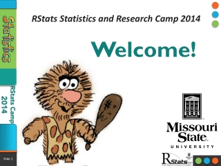 RStats Statistics and Research Camp 2014