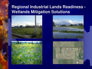 Regional Industrial Lands Readiness -  Wetlands Mitigation Solutions