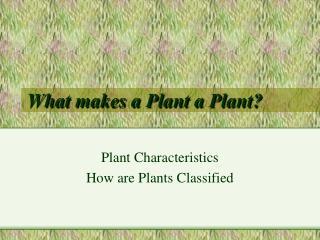 What makes a Plant a Plant?