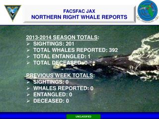 2013-2014 SEASON TOTALS : SIGHTINGS: 201   TOTAL WHALES REPORTED: 392  TOTAL ENTANGLED: 1
