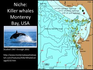 Niche: Killer  whales Monterey Bay, USA