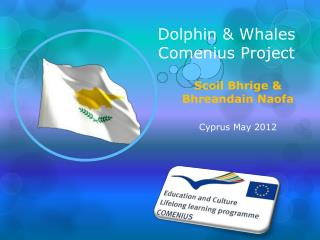Dolphin & Whales Comenius Project