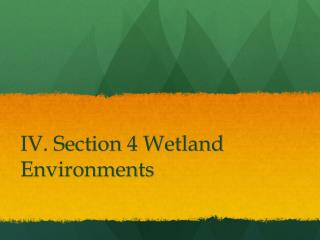 IV. Section 4 Wetland Environments