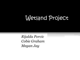 Wetland Project