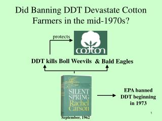 Did Banning DDT Devastate Cotton Farmers in the mid-1970s?