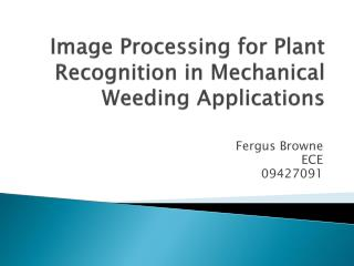 Image Processing for Plant Recognition in Mechanical Weeding Applications