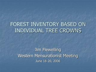 FOREST INVENTORY BASED ON INDIVIDUAL TREE CROWNS