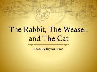 The Rabbit, The Weasel, and The Cat