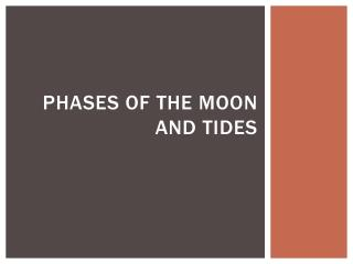 Phases of the Moon and tides